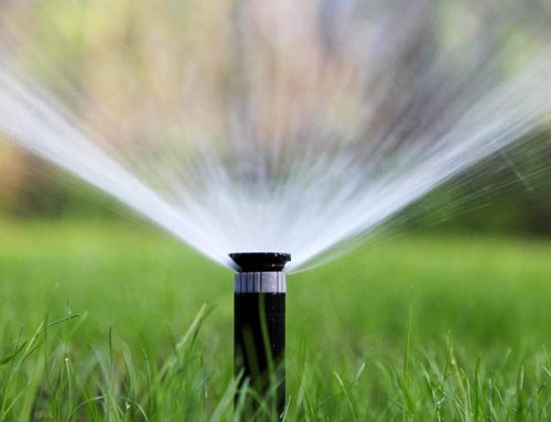 Checklist for Irrigation