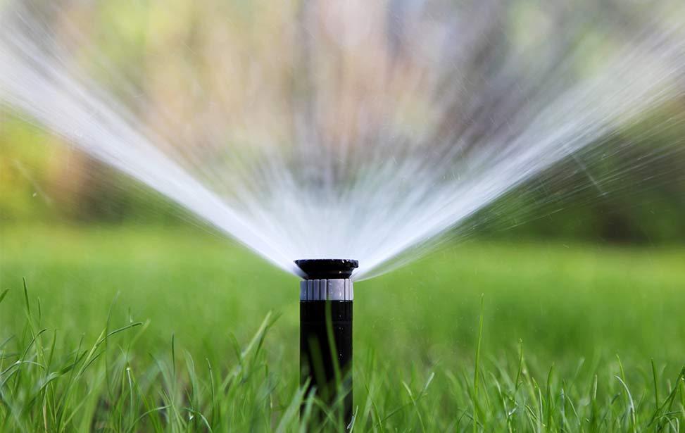 Checklist for Irrigation